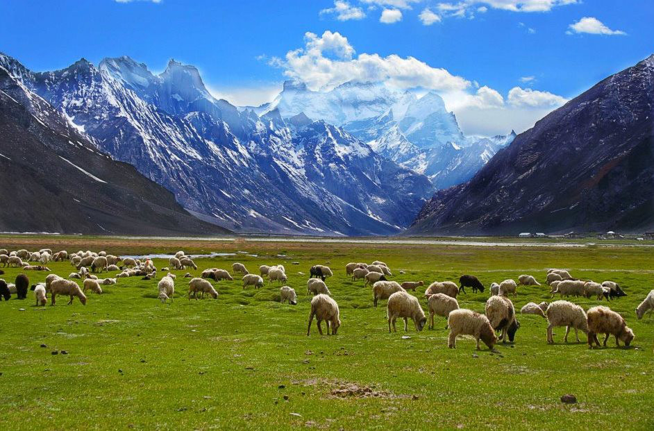 Places to visit in India- Kashmir